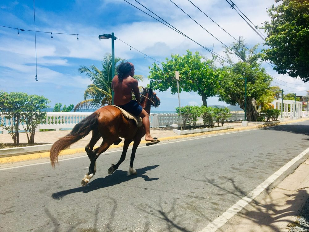 Man galloping down the street bareback near exotic beach