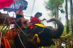 Senior Travel Tips woman on elephant in Thailand